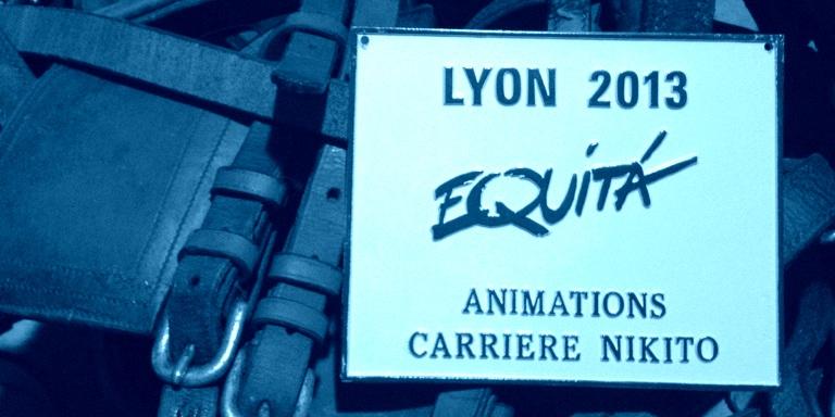 vignette-equita-2013
